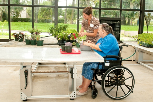 picture of a woman in a wheel chair table gardening