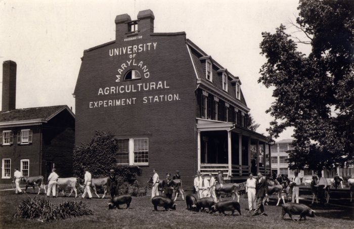 historical picture of UMD ag exp. station